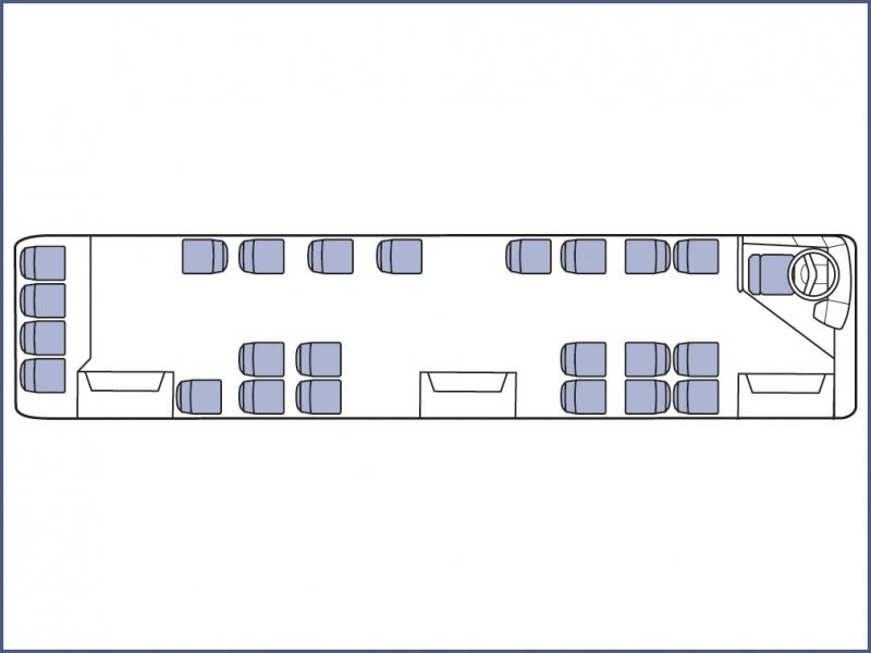 ЛиАЗ-5256 город